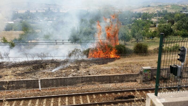incendio borreca (2)