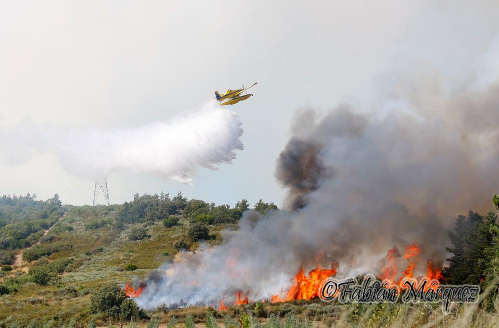 incendio fuego pantano-3