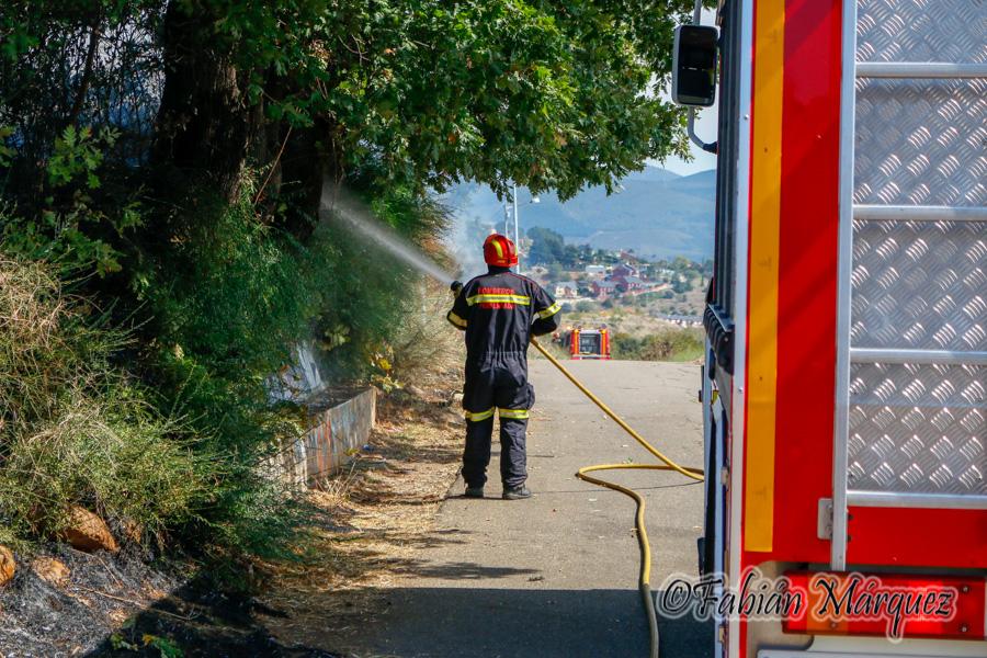 bomberos caminin-2