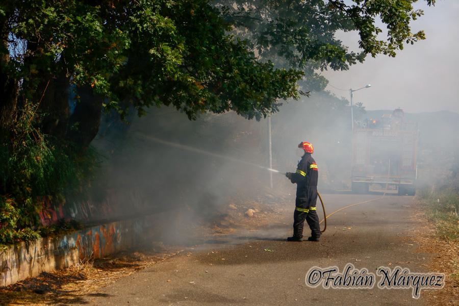 bomberos caminin-5