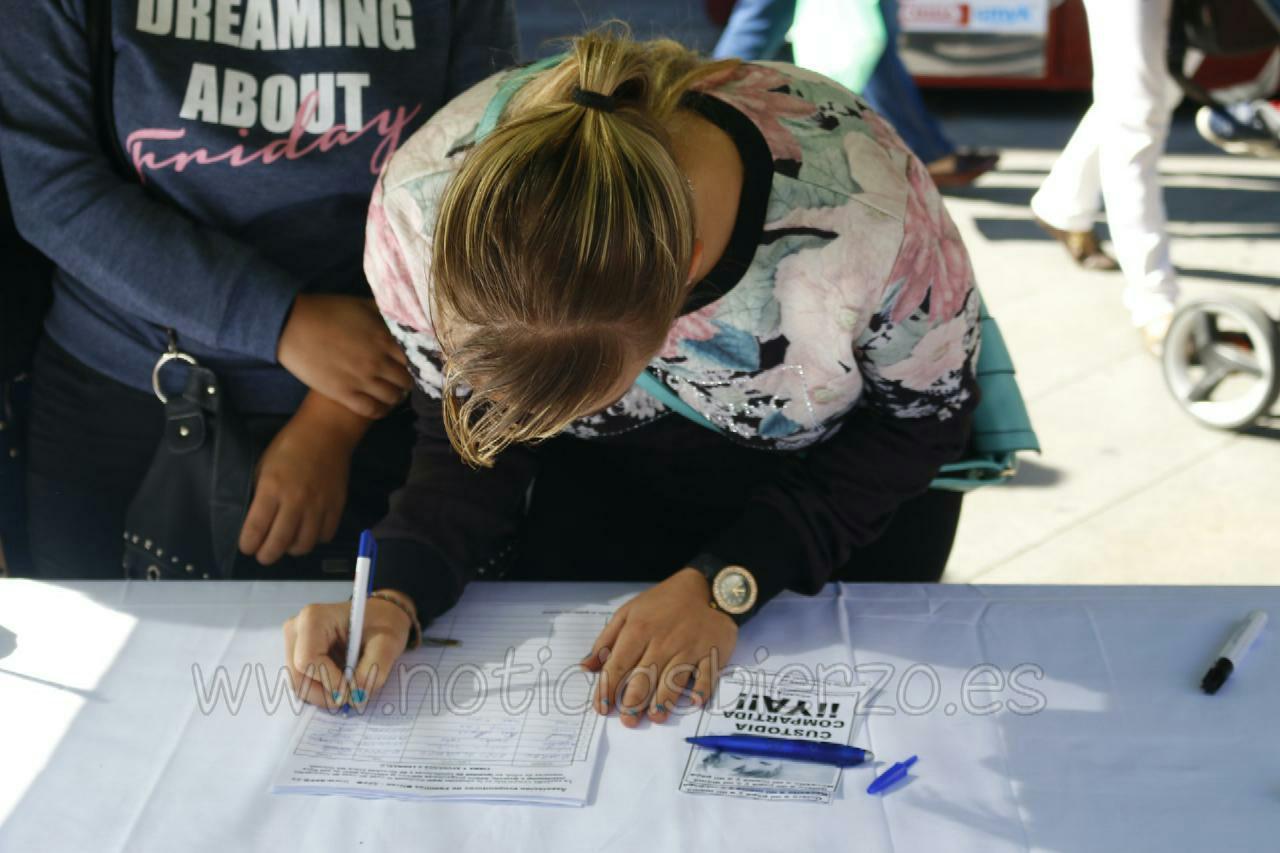 firmas custodia compartida (2)