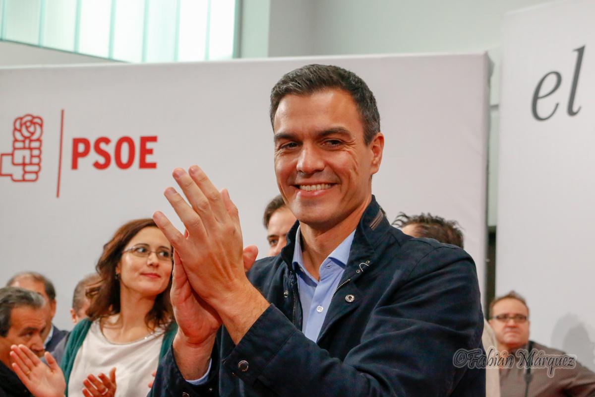 Pedro Sanchez psoe toral-1