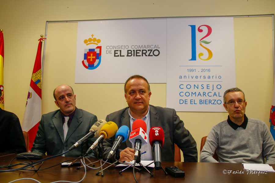 Nuevo logo consejo comarcal-3